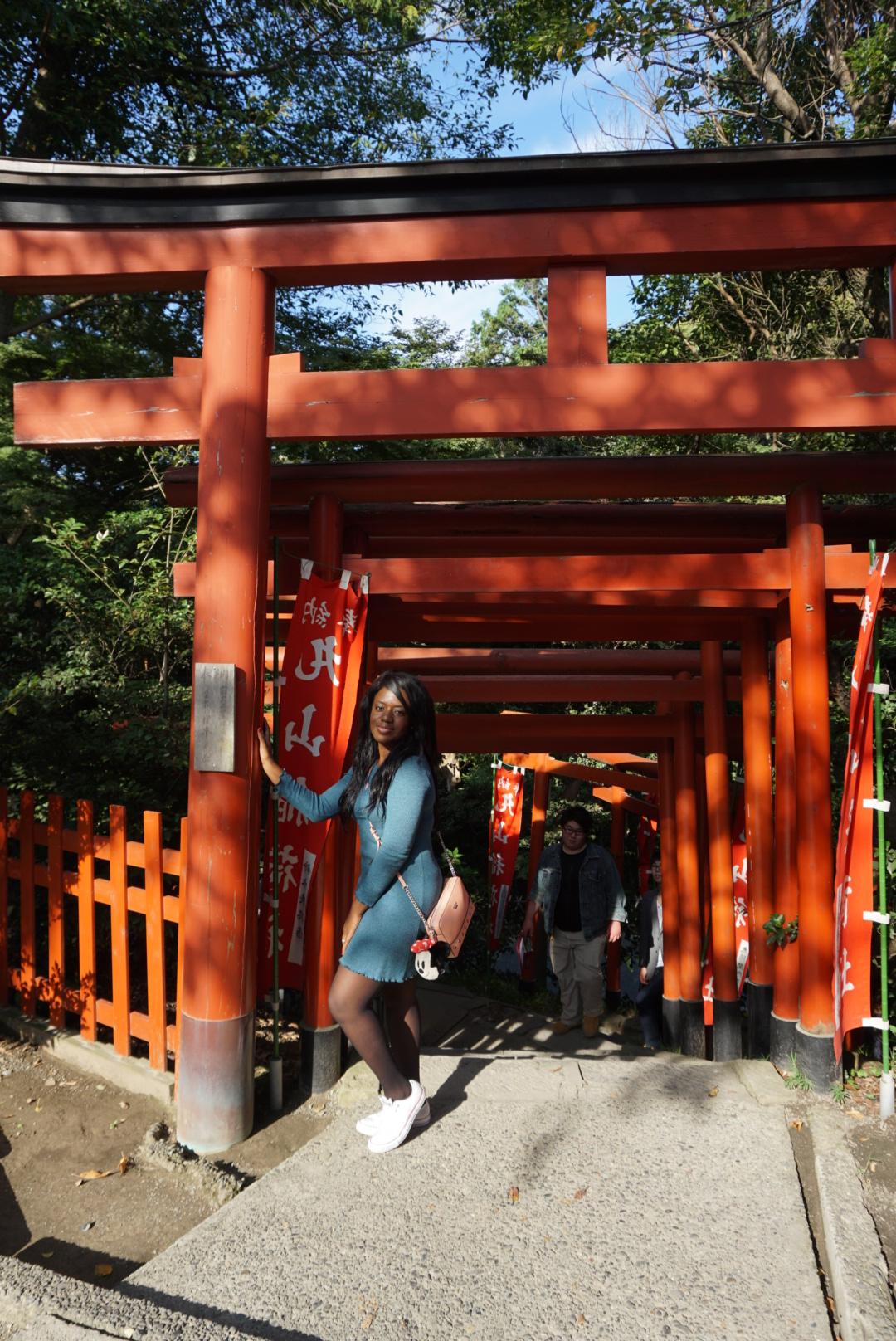 TOKYO: UN VIAJERENOVADOR